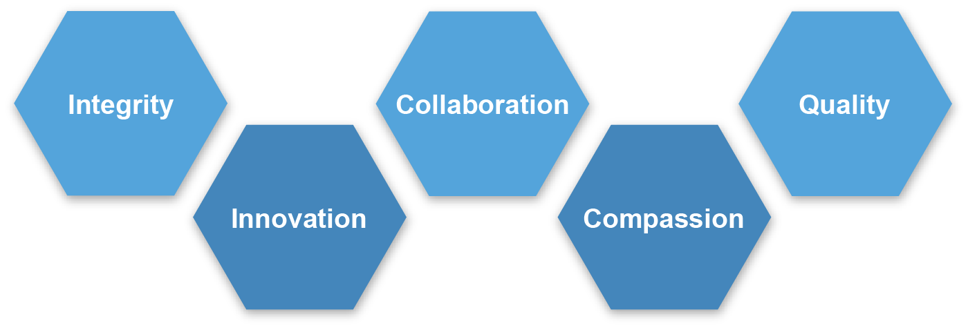 Animas Data Solutions Values: Integrity, Innovation, Collaboration, Compassion, Quality