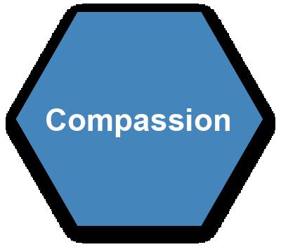 Animas Data Solutions Values: Compassion